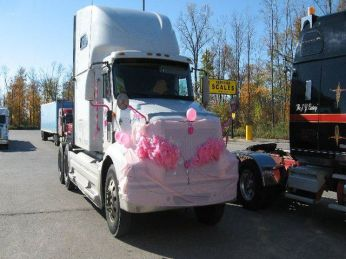 2010 white pink decor bobtail