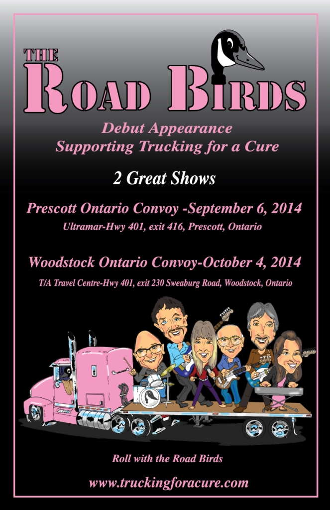 Road Birds Poster